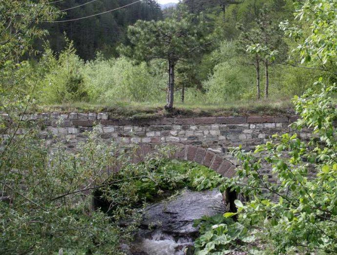"""Преди селото римски мост """"отглежда"""" крехко дръвче."""
